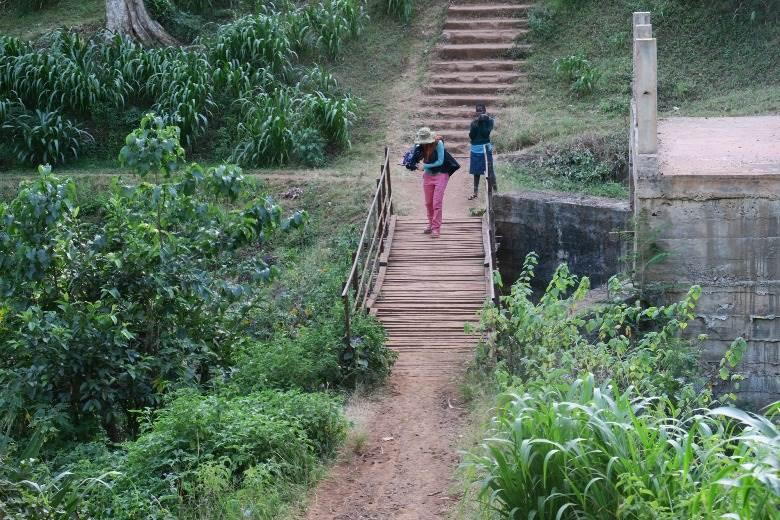 המשך בא. אפריקה!|צילום: באדיבות דבורית שרגל