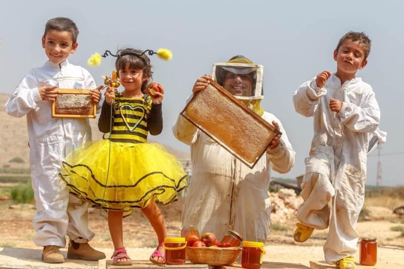 מתוקים מדבש. מכוורת רייקין בשדה אליעזר|צילום: סוכנות ג'יני