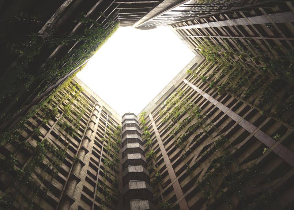 מס מופחת. בניין|צילום: StockSnap.io