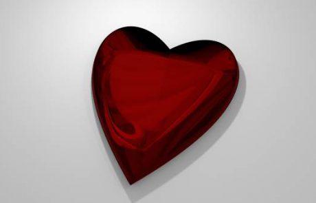 לאהבה יש את הזמן שלה / מאת: הדס ויסמן