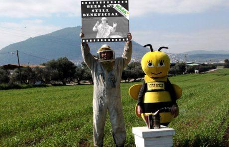 פסטיבל הקולנוע הבינלאומי המוקדש לדבורים